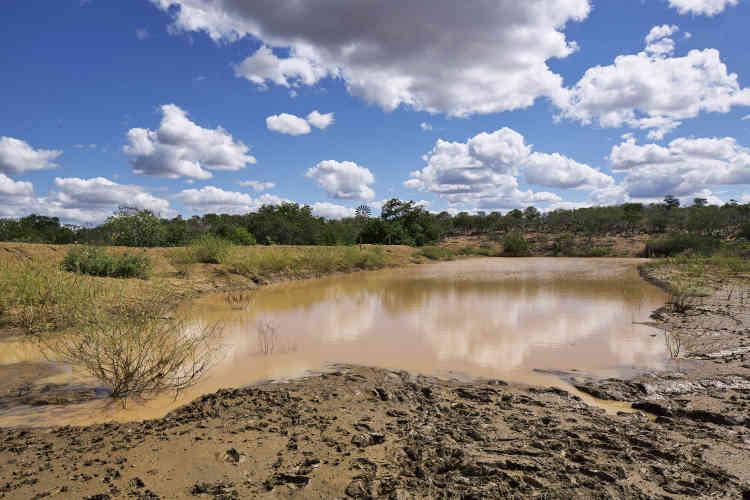L'un des rares points d'eau à des kilomètres à la ronde dans la municipalité.