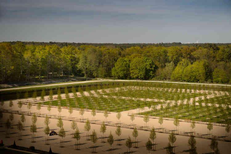 Le quinconce est constitué de quatre bosquets carrés de merisiers à fleurs, au sol engazonné. Sa géométrie rigoureuse contraste avec le «naturel» de la forêt.