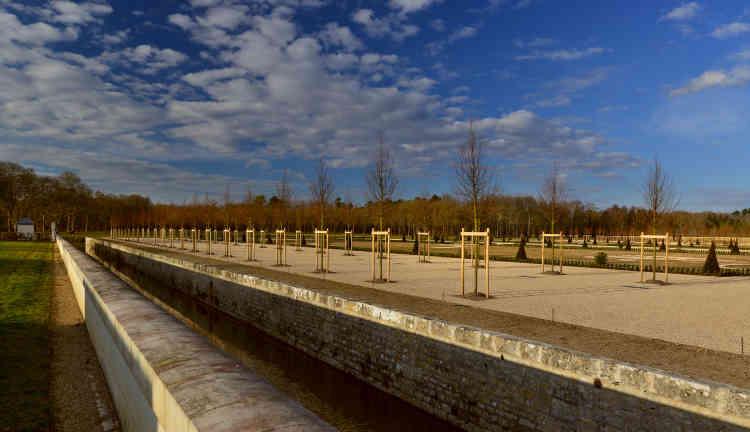 Les arbres sont alignés le long d'une plate-bande bordant un parterre de gazon, agrémentée de topiaires taillés en cônes et en boules.