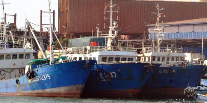 Des navires chinois dans le port de Conakry, en Guinée, le 11avril 2017. Lors d'une inspection, les autorités ont notamment découvert une carcasse de grand requin-marteau, une espèce protégée.