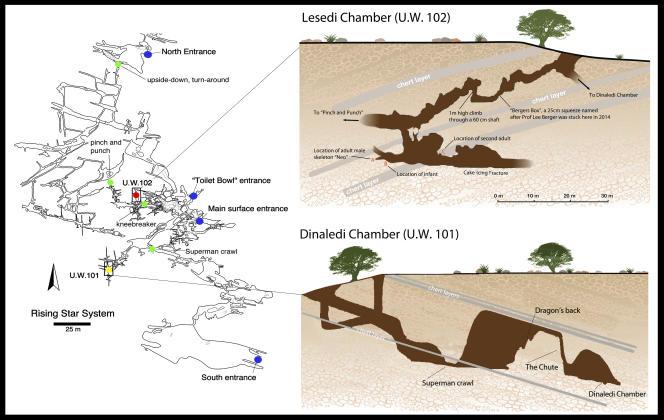 Complexe souterrain «Rising Star», près de Johannesburg, en Afrique du Sud, où de nombreux fossiles de l'espèce Homo Naledi ont été découverts dans deux chambres distantes d'une centaine de mètres.