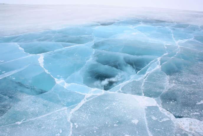 Dans l'Arctique.