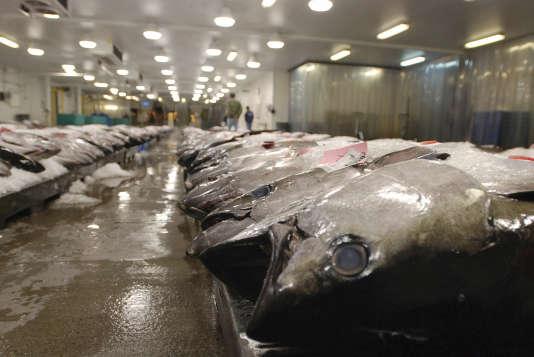 Du thon sur un marché aux poissons de Honolulu, dans l'Etat américaind'Hawaï, le 23mars 2016.