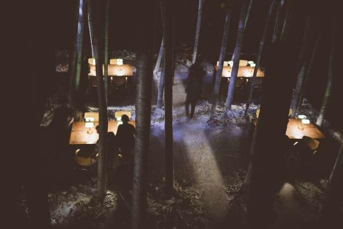 La salle d'études peuplée de troncs d'arbres où commence le périple.