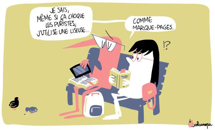 Pourquoi Les Francais Boudent Le Livre Numerique