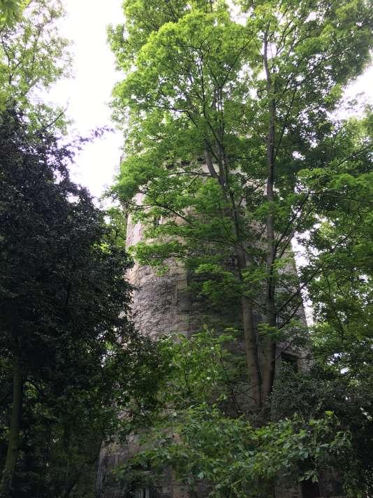 Une tour médiévale, crénelée à l'époque d'Haussmann, dans son environnement végétal actuel.