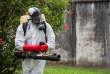 Un agent détruit des larves de moustiques à Cayenne, en Guyane, le 19 février 2016.