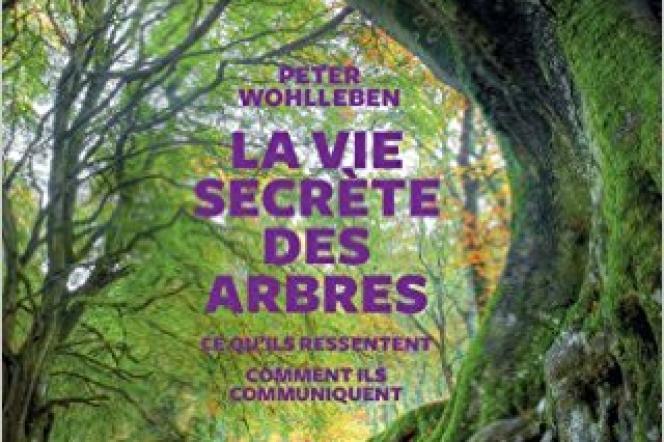 «La Vie secrète des arbres», de Peter Wohlleben, Les Arènes, 272 pages, 20,90euros.