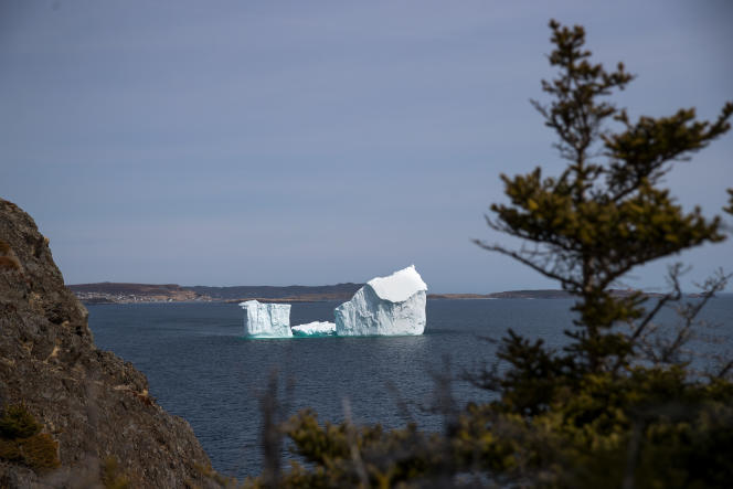 Un iceberg flotte dans l'océan atlantique, près de la côte de Port Kirwan, dans la province de Terre-Neuve-et-Labrador, au Canada.