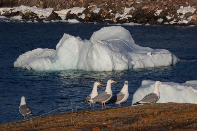 Un iceberg flotte à Flatrock, détaché de l'île de Baffin ou du Groenland, au Canada, le 25 avril 2017.