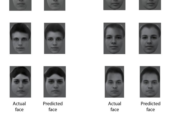 Cette image montre huit visages présentées à des macaques. L'image de droite est celle reconstituée à partir de l'analyse des signaux électriques de neurones enregistrés alors que les singes observaient ces visages.