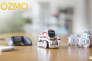 Le robot Anki sera commercialisé en France en septembre 2017.