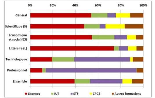 Premiers vœux - Choix de filières des candidats, par série d'inscription au bac (en %)