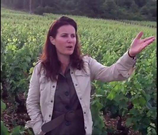 Virginie Taupenot, vigneronne à Morey-Saint-Denis (Côte-d'Or), et présidente de l'association Femmes et vins de Bourgogne :« On ne fait pas de vin de femme, on est des femmes de vin.»