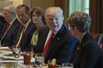De Mike Pence à Reince Priebus en passant par Tom Price, les ministres de Donald Trump n'ont pas tari d'éloges sur le président américain.