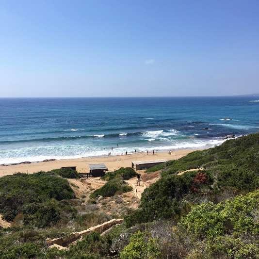 Une plage sauvage, dans l'Akamas, où viennent pondre les tortues.