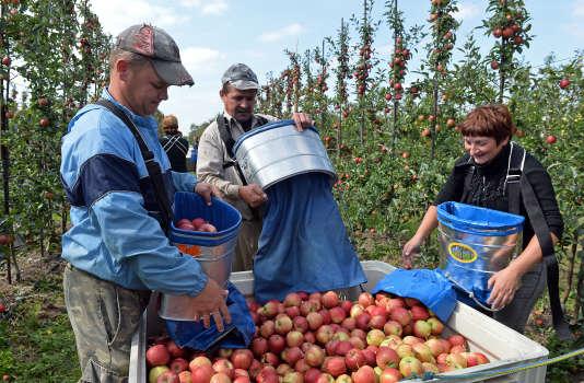 Des travailleurs saisonniers ukrainiens à Leczyszyce (Pologne), en 2014.