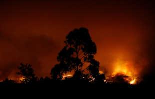 Le feu s'est déclaré samedi 17 juin peu avant 15 h, heure locale, dans la commune de Pedrogao Grande, située dans le district de Leiria.