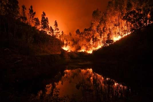 Le directeur national de la police judiciaire a affirmé que le feu qui a ravagé le Portugal, samedi 17 juin, était dû à un orage sec. / AFP / PATRICIA DE MELO MOREIRA