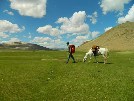 """TO GO WITH AFP STORY BY PATRICK FILLEUX This handout picture released on September 29, 2016 shows Eliott Schonfeld from France walking with a horse in a field in Mongolia on June 24, 2015. / AFP PHOTO / Eliott SCHONFELD / RESTRICTED TO EDITORIAL USE - MANDATORY CREDIT """"AFP PHOTO / Eliott Schonfeld"""" - NO MARKETING NO ADVERTISING CAMPAIGNS - DISTRIBUTED AS A SERVICE TO CLIENTS"""