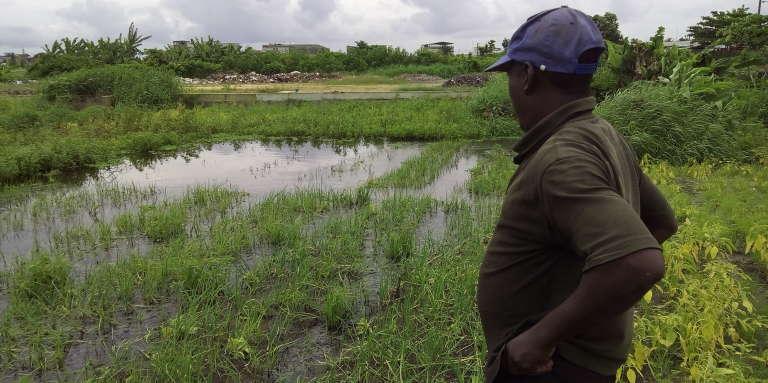 Charles Acakpo contemple son terrain innondé sur le site maraîher deHouéyiho, un quartier de Cotonou, au Bénin, en 2017.