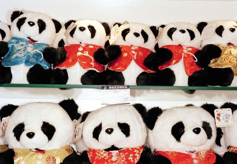 Sur ce cliché de Martin Parr, une série bien alignée de pandas attend les clients dans une boutique de l'aéroport de Shanghaï. Star des enfants, avec son regard tendre, cet ursidé mangeur de bambous demeure aussi un classique de la diplomatie chinoise. Le 24juin, deux spécimens atterrissent à Berlin, dans un avion spécialement affrété depuis Chengdu, pour rejoindre le zoo de la capitale allemande. Pékin contrôle le flux, prête aux pays amis ses précieux animaux, qui ont rang de trésor national. Mais depuis l'époque de la Chine maoïste, où un tel prêt était plus rare et lourd de sens, les choses ont bien changé. Les pandas sont surtout, pour les zoos qui les accueillent, la promesse d'un gros coup de pub, de files de visiteurs qui s'allongent et de ventes fructueuses des mêmes peluches qu'à Shanghaï.