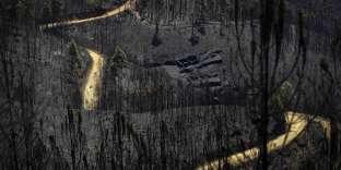 Paysage de désolation, le 20juin 2017, après l'incendie qui a ravagé les environs de Pedrogao Grande, dans le centre du Portugal.