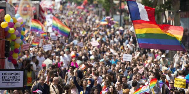Marche des fiertés lesbiennes, gays, bisexuelles et trans, à Paris le 29 juin 2013.