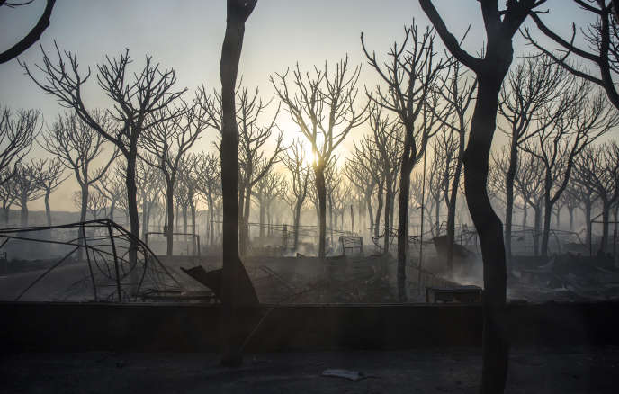 L'incendie a ravagé un camping près de Mazagon, dans le sud de l'Andalousie, dimanche 25 juin.