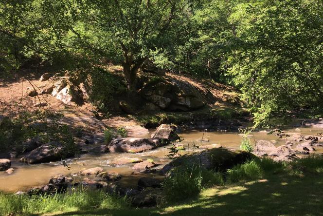 La rivière qui coule dans l'arboretum de la Sédelle.
