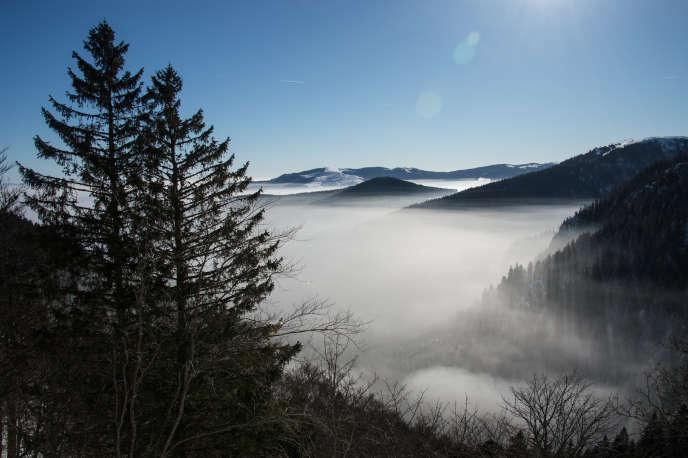 Dans les Vosges, en janvier.
