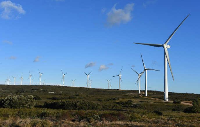 Champ d'éoliennes, près de Villeveyrac (Hérault, en janvier.