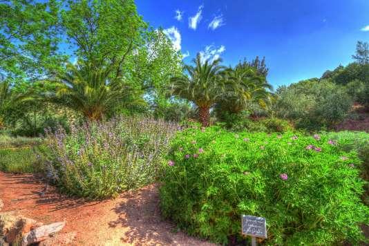 Le jardin d'herbes et de plantes aromatiques du domaine de la Roseraie, à Ouirgane.