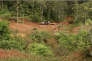 Capture d'écran d'un reportage diffusé par Guyane 1ère, le 18 mars, sur la compagnie minière Montagne d'or.