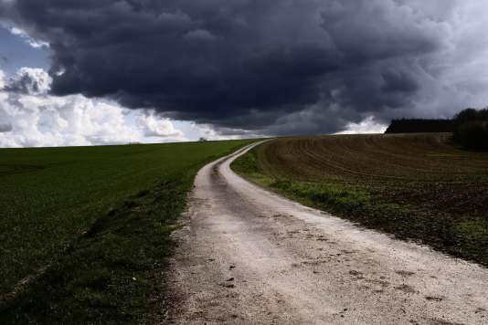 Le photographe Meyer a marché de Chablis à Vézelay (140km). «Nous voilà ici libérés de l'ambition, ne pas savoir et s'avancer, nous marchons. De longs chemins se frottent aux vignes, l'hiver est à bout, il disparaît. Sous le soleil, la rocaille m'éprouve rapidement, je ralentis, tout est calme, pensif.»