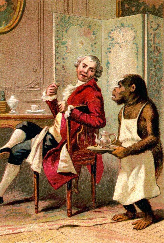 Buffon se faisant servir le thé par son chimpanzé apprivoisé, Joco. Chromo du XIXe siècle.
