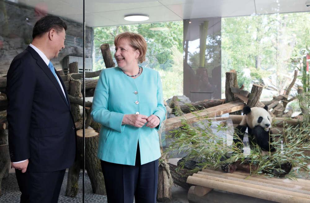 Angela Merkel a présenté les deux « diplomates » Meng Meng et Jiao Qing , « les ambassadeurs de nos deux pays».