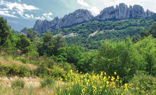 Ces montagnes calcaires sont incroyablement ciselées.