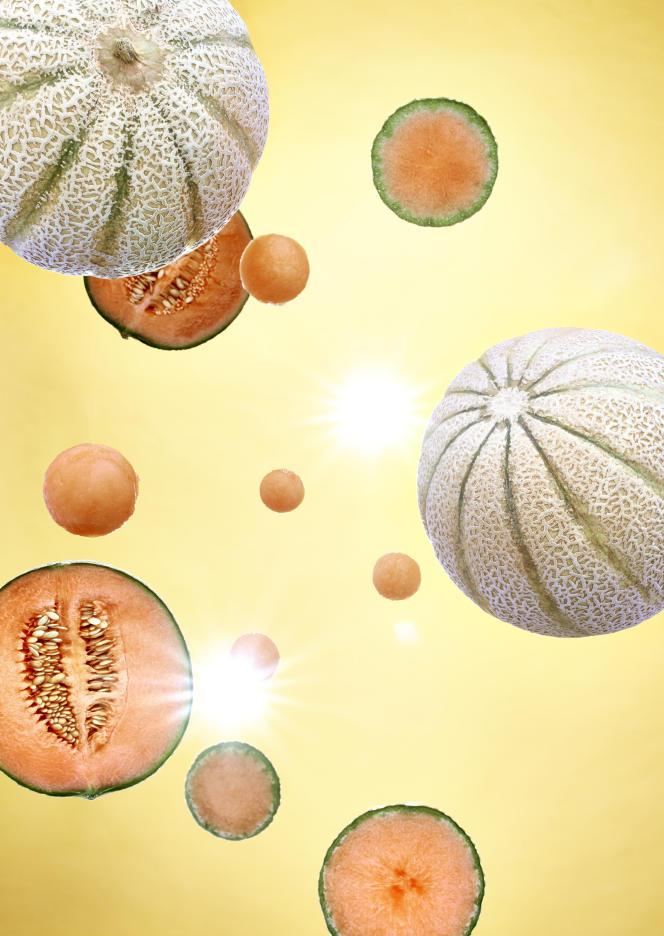 Bon marché, peu énergétique, riche en eau (90% de leur chair) ainsi qu'en vitamines, le melon est très désaltérant.