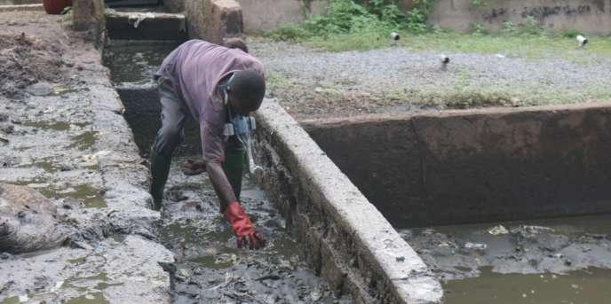 Un employé de la décharge d'excréments de Douala trie les tissus et les serviettes hygiéniques des boues, en juin 2017.