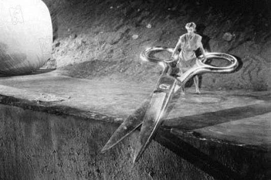 «L'Homme qui rétrécit», film de Jack Arnold.
