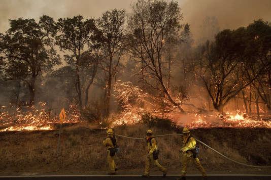 Des pompiers tentent de maîtriser l'incendie, près d'Oroville, en Californie (Etats-Unis), le 8 juillet.