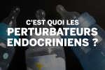 Comprendre comment fonctionnent les perturbateurs endocriniens.