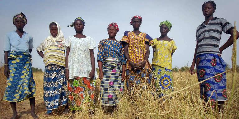 Au nord du Burkina Faso, des femmes cultivent des parcelles de riz.