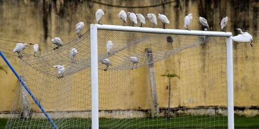 Dans un stade à Libreville, au Gabon.