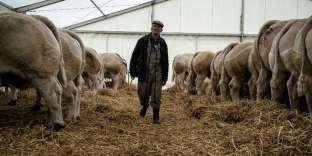 Alors que s'ouvrent les États généraux de l'alimentation, la situation économique des agriculteurs français demeure inquiétante.