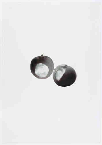 Anri Sala offre un triptyque intitulé « Le Jour de gloire » et composé de trois dessins. Quatre pommes y sont représentées selon la tonalité associée aux mots «Le Jour de gloire» dans la partition de «La Marseillaise». Les morsures appartiennent à des réfugiés que l'artiste a invités lors d'un atelier de trois jours, organisé avec Kurt-Kurt, à Berlin. Au cours de ces séances, l'artiste et les réfugiés ont produit des objets, des dessins et des photographies.Chaque image est dessinée par couches consécutives d'encre humide appliquées sur du papier minéral, caractérisé par son manque d'absorption– le liquide sèche lentement à la surface du papier.