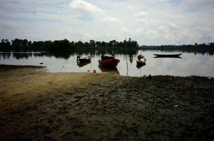 Sur la petite île de Nwemu, les oiseaux ne chantent plus et les poissons se meurent dans les eaux saumâtres infestées de pétrole. Une grande partie de la mangrove, la plus vaste d'Afrique, est recouverte d'un vernis noir.