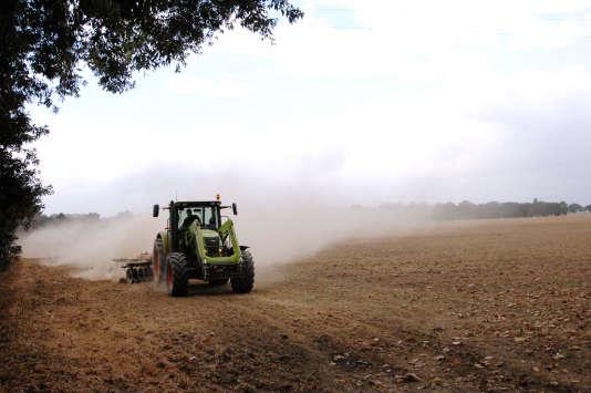 Près de 36 millions de tonnes de blé devraient être récoltées en France en2017. Soit 30% de plus que l'an dernier.