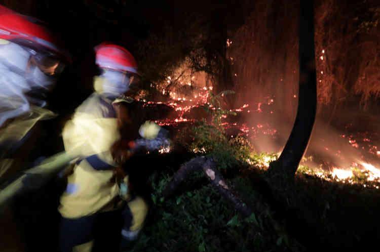 Des pompiers luttent contre un feu à Castagniers, près de Nice le 17 juillet.